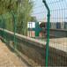 牛羊養殖鐵絲護欄網批發鐵絲圍欄網綠色鐵絲網生產廠家