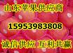 云南昆明红富士苹果批发价格