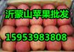 红富士苹果批发哪里便宜山东红富士苹果基地价格