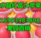 北京红富士苹果批发产地价格行情山东