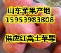 河南南阳红富士苹果多少钱一斤