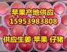 海南水晶红富士苹果最新批发行情