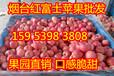 产地纸袋红富士苹果价格下跌明显