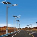 供应道路照明灯LED灯新农村改造专用灯图片