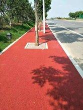 江苏南通彩色透水混凝土道路透水地坪路面厂家图片
