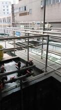 蓝博湾LBOW-CY-03餐厨污水处理厂家,餐厨垃圾处理成套设备公司
