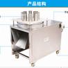 厂家直发不锈钢多功能果蔬切片机