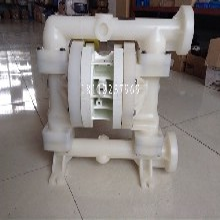 美国威尔顿PVDF气动隔膜泵P200KKPPPTNUTFKTV图片