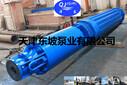 天津东坡QSPF不锈钢喷泉专用泵-使用条件-应用范围