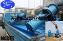 天津东坡QJH海水潜水泵使用说明-耐腐蚀海水潜水泵