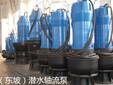 天津东坡QSZ、QSL型充水式轴(混)流潜水电泵