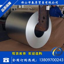 廣東鍍鋅板廠家/樂從鍍鋅/DX51D/120鋅鍍鋅/佛山春厚供應圖片