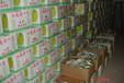 内江水果保鲜库内江蔬菜保鲜库价格内江冷库安装价格内江果蔬气调库安装价格