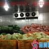 蔬菜冷库安装蔬菜保鲜冷库蔬菜气调保鲜库