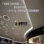 山东省临沂市穿孔石膏板厂家图片