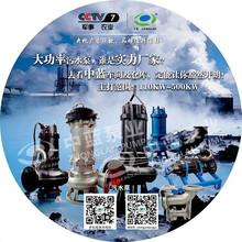 污水处理厂用大流量潜水泵污水泵图片