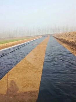 垃圾填埋封场土工膜、环卫垃圾防渗土工膜、防渗膜厂家、进口土工膜