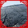 人工湖防渗膜、鱼塘防渗膜、600克两布一膜、长丝土工布价格