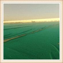 草绿色土工布、150克绿色防尘布、绿色土工布图片