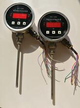 遼陽供應智能電子溫度控制器圖片