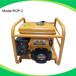勤达ROP-2汽油水泵