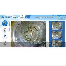 虫情监测系统在浙江早稻虫害防控工作中发挥着重要作用