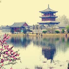 北京集团公司注册代办组建要求