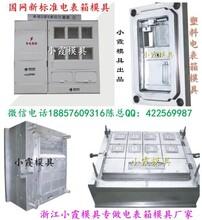 生产注射模,标准新国网单相十二电表箱塑料模具小霞模具厂电话