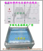 台州塑胶模具,标准新国网单相九电表箱塑料模具哪里做的好