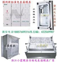 中国专做塑胶模具公司,单相六电表箱注塑模具厂地址