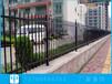 屯昌鋅鋼柵欄安裝學校圍墻欄桿鐵圍欄
