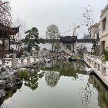 嘉興公園魚池水處理,魚池清洗圖片