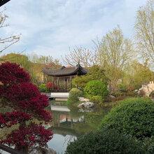 蕭山區小別墅施工圖片