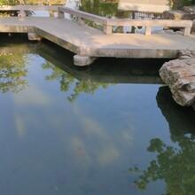 潍坊东森游戏主管园鱼池清洗,鱼池过滤图片