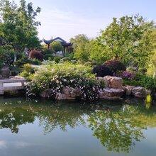 揚州魚池水處理公司圖片