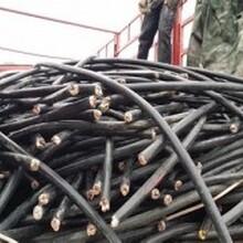 垦利电缆回收图片