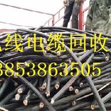 青岛废电缆回收图片