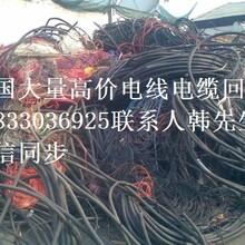 高价电线电缆回收图片
