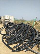 保定废电缆回收图片
