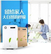 北京贴牌空气净化器加湿机厂家直销图片