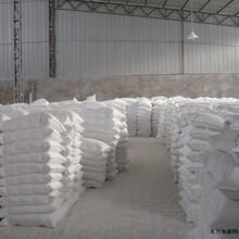 佛山輕質碳酸鈣,1250目輕鈣粉哪里有賣,高白度輕質碳酸鈣供應商圖片