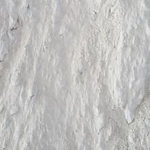 勃震硅酸鎂,惠州橡膠用滑石粉在哪里買圖片