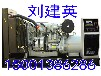 供应赤城县大型发电机出租静音发电机出租电线电缆出租