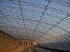 温室工程寿光九合农业大棚建设