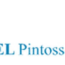 优势专业供应意大利PELPintossiS.p.A.球阀-德国赫尔纳贸易图片