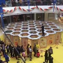 周口蜂巢迷宫出租机械大象展览租赁雨屋出租图片