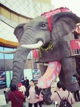 互动闯关蜂巢迷宫出租,机械大象展览租赁图片