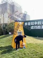 随州变形金刚模型真人秀展览出租荷兰风车租赁图片
