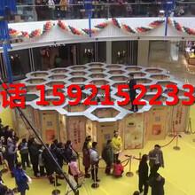 合肥大型商场展览活动机械大象出租,蜂巢迷宫租赁出租图片