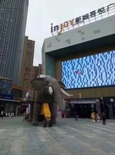 天津红桥复古火车头现货租赁巡游设备机械大象出租